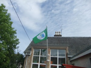 The Green Flag 005